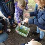 Atelier 5 - Nous plaçons ensuite de l'herbe, de la mousse et des écorces